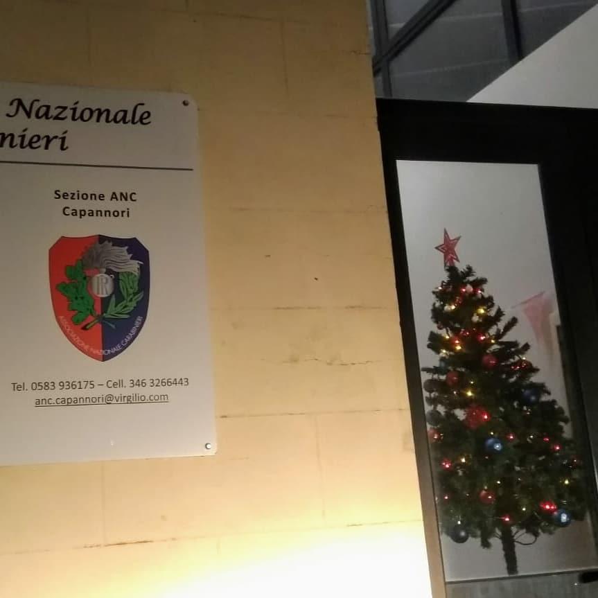 L'albero del Nucleo ANC-PC Lucca